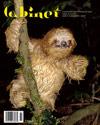cabinet magazine no.29